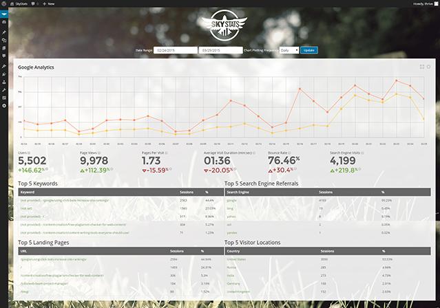 Google Analytics Detail Page Screenshot